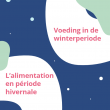 alimentation hivernale.png